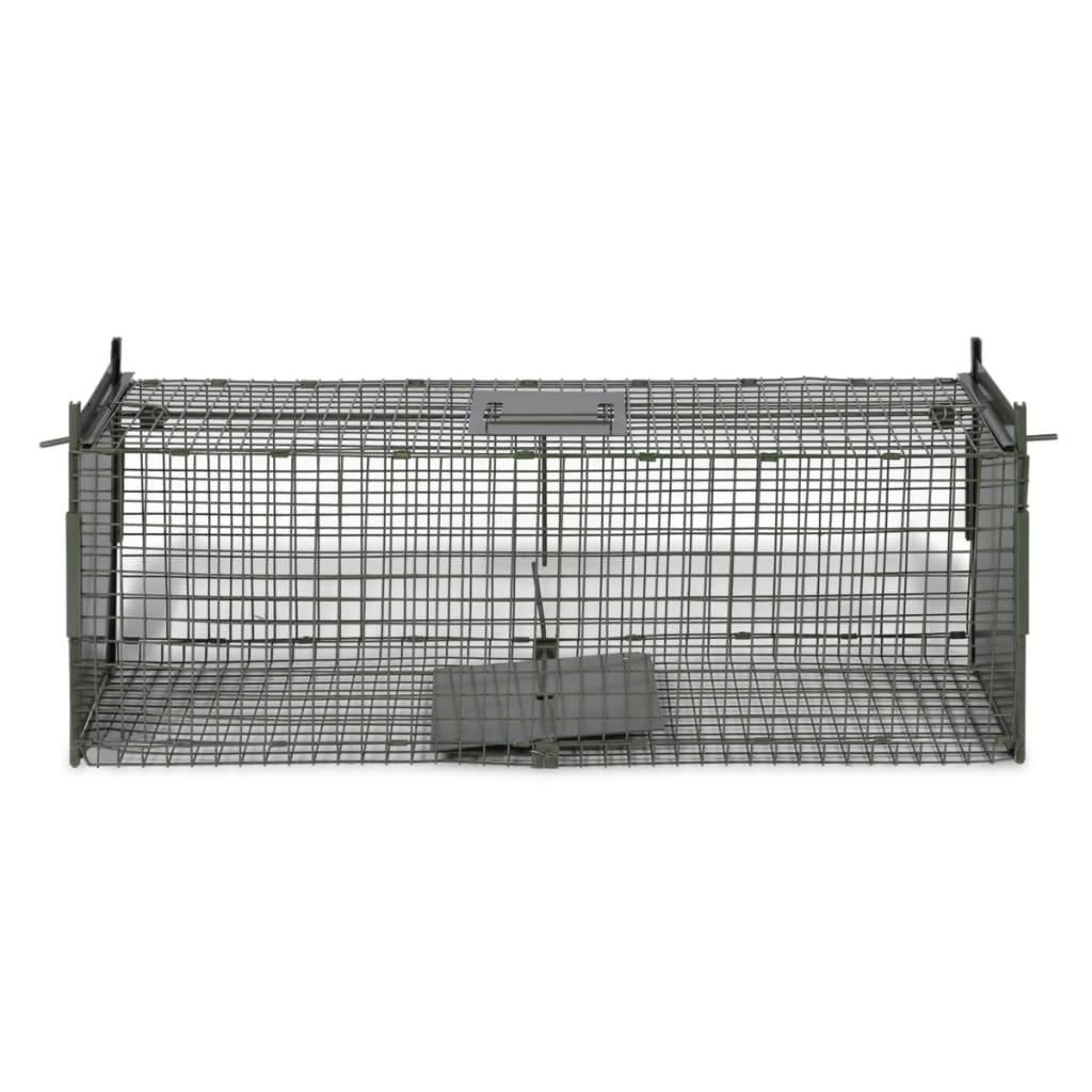 thumbnail 10 - Live Catch Trap With 1/2 Doors Humane Rat Cat Fox Animal Outdoors Cage Catcher
